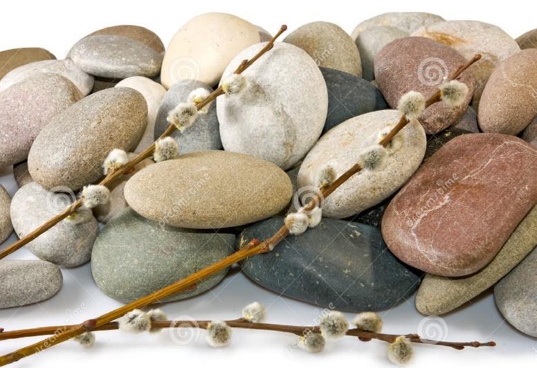 Cette image des galets et des branches de saule montre l'harmonie pouvant exister entre les approches du Focusing et de la pleine conscience.