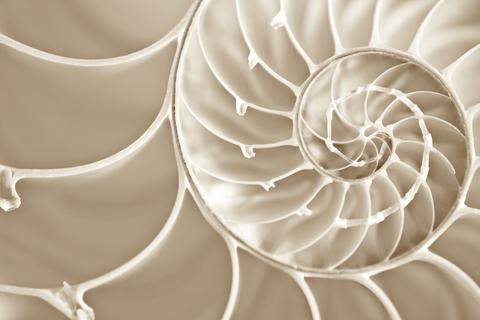 Même si on le représente par des étapes, le Focusing se déroule en un mouvement naturel.